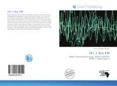 Bookcover of 101.3 Sea FM