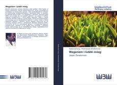 Bookcover of Weganizm i ludzki mózg