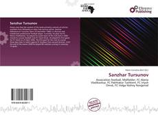 Sanzhar Tursunov kitap kapağı