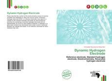Borítókép a  Dynamic Hydrogen Electrode - hoz