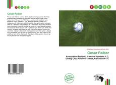 Bookcover of Cesar Paiber