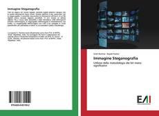 Обложка Immagine Steganografia