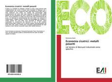 Copertina di Economia cicatrici: metalli pesanti