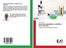 Copertina di Crescita anaerobica e aerobica di A. eutrofus
