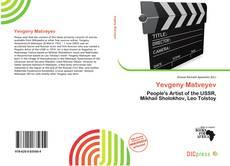 Bookcover of Yevgeny Matveyev