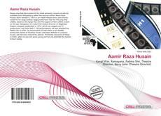 Bookcover of Aamir Raza Husain
