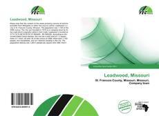 Bookcover of Leadwood, Missouri