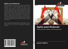 Egitto post-Mubarak: kitap kapağı
