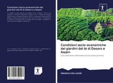 Copertina di Condizioni socio-economiche dei giardini del tè di Dooars e Assam
