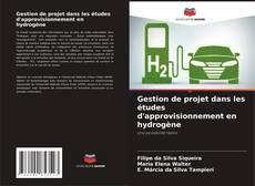 Couverture de Gestion de projet dans les études d'approvisionnement en hydrogène