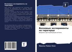 Bookcover of Волновые эксперименты на терагерце