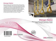 Copertina di Ditzingen Station
