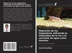 Couverture de Migración de los langostinos utilizando la intensidad de la luz y la corriente de agua como inductor