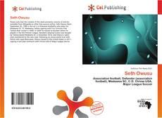 Bookcover of Seth Owusu