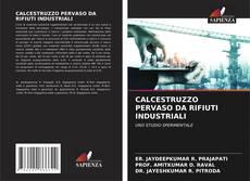 Copertina di CALCESTRUZZO PERVASO DA RIFIUTI INDUSTRIALI