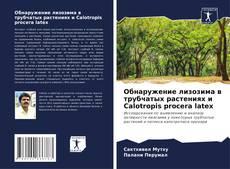 Buchcover von Обнаружение лизозима в трубчатых растениях и Calotropis procera latex