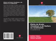 Couverture de Efeito do Brady rhizobium e do fósforo no rendimento