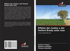 Обложка Effetto del rizobio e del fosforo Brady sulla resa