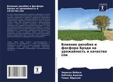 Copertina di Влияние ризобия и фосфора Брэди на урожайность и качество сои