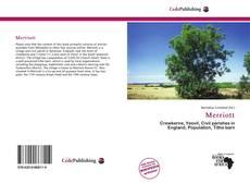 Merriott kitap kapağı