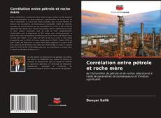 Corrélation entre pétrole et roche mère kitap kapağı