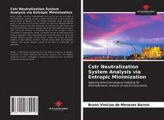 Bookcover of Cstr Neutralization System Analysis via Entropic Minimization