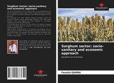 Bookcover of Sorghum sector: socio-sanitary and economic approach