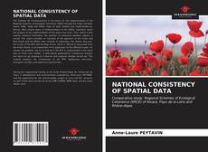 Bookcover of NATIONAL CONSISTENCY OF SPATIAL DATA