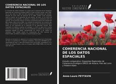 Buchcover von COHERENCIA NACIONAL DE LOS DATOS ESPACIALES