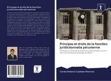 Bookcover of Principes et droits de la fonction juridictionnelle péruvienne