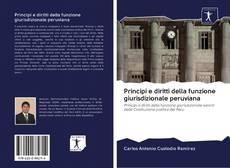 Bookcover of Principi e diritti della funzione giurisdizionale peruviana