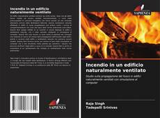 Capa do livro de Incendio in un edificio naturalmente ventilato