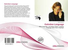 Borítókép a  Galindian Language - hoz