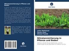 Buchcover von Nitratanreicherung in Pflanze und Boden