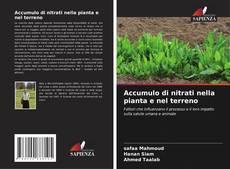 Portada del libro de Accumulo di nitrati nella pianta e nel terreno