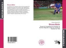 Bookcover of Bruno Belin