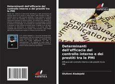 Copertina di Determinanti dell'efficacia del controllo interno e dei prestiti tra le PMI