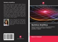 Couverture de Química Analítica