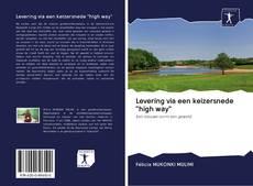 "Bookcover of Levering via een keizersnede ""high way"""