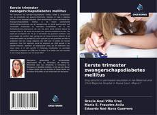 Buchcover von Eerste trimester zwangerschapsdiabetes mellitus