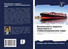 Безопасность водного транспорта в глобализированном мире的封面