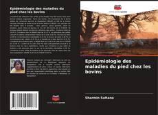 Bookcover of Epidémiologie des maladies du pied chez les bovins