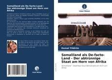 Buchcover von Somaliland als De-facto-Land - Der abtrünnige Staat am Horn von Afrika