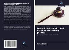 Bookcover of Bangui Politiek akkoord: vindt er verzoening plaats?