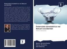 Borítókép a  Potenziale idroelettrico nei Balcani occidentali - hoz