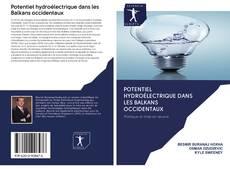Portada del libro de Potentiel hydroélectrique dans les Balkans occidentaux