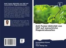 Bookcover of Anti-Tumor-Aktivität von XAP auf menschliche Magenkrebszellen