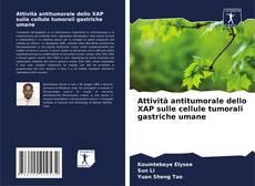 Copertina di Attività antitumorale dello XAP sulle cellule tumorali gastriche umane