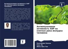 Capa do livro de Антиопухолевая активность XAP на клетках рака желудка человека
