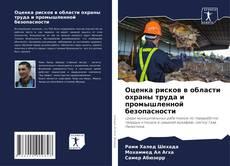 Capa do livro de Оценка рисков в области охраны труда и промышленной безопасности